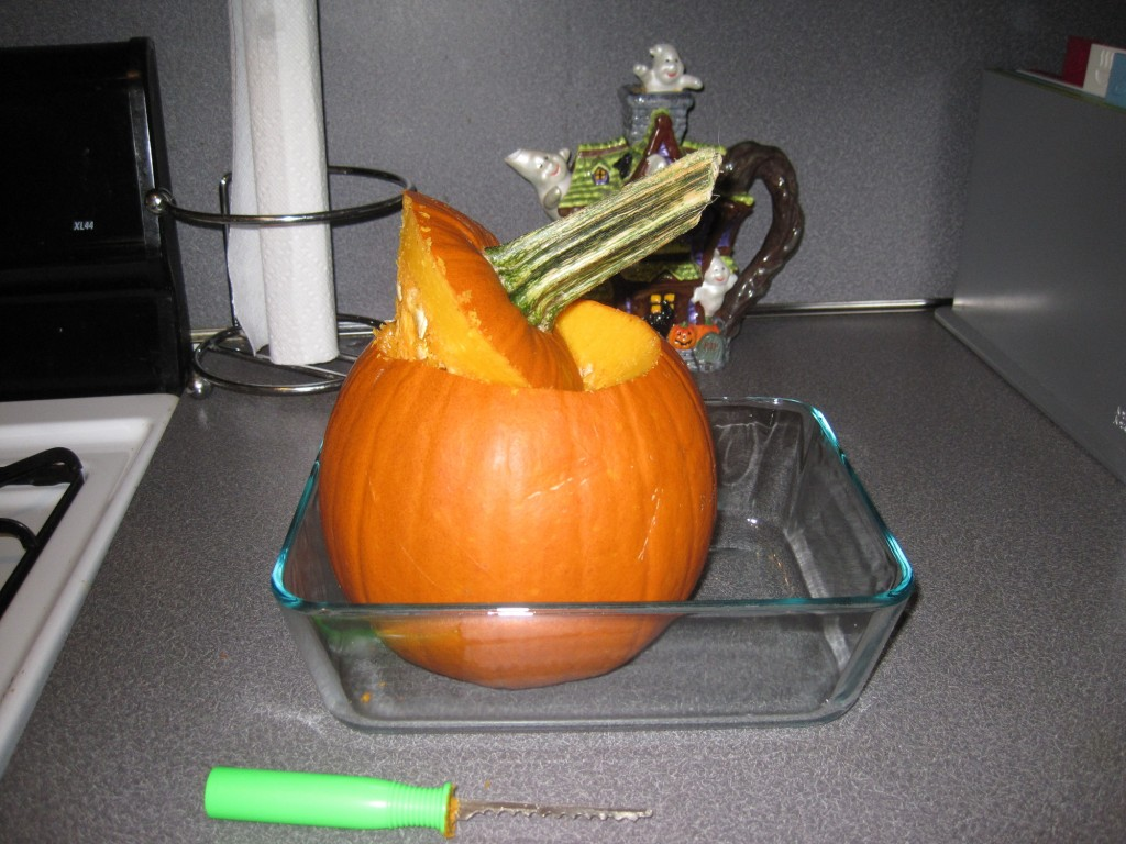 Pumpkin_tutorial1